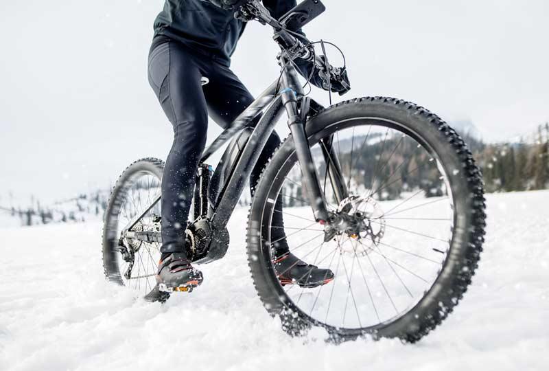 Bici elettrica professionale