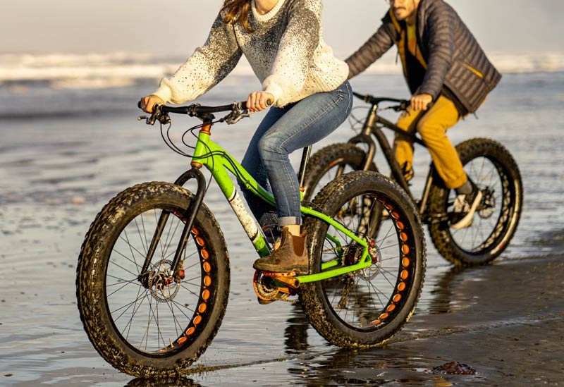 Fat Bike elettrica
