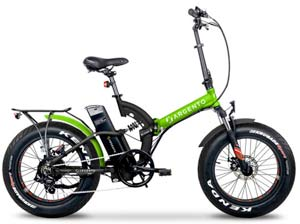 Argento bici elettrica