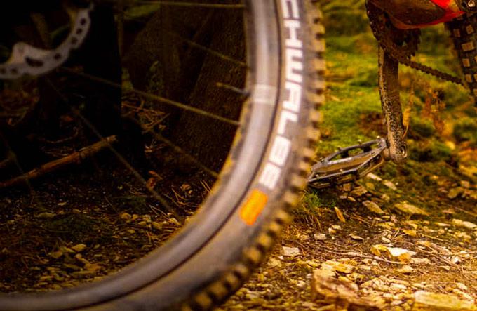Copertoni Schwalbe per mountain bike